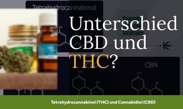 Unterschied CBD und THC als Bestandteile des Cannabis