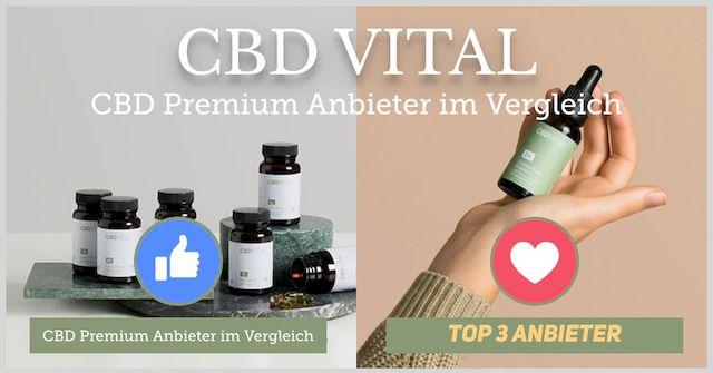 CBD Anbieter & Marken | Top3 Auswahl 2020 für Deutschland 1