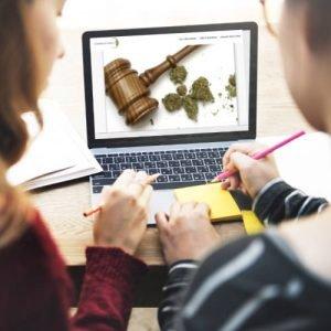2 Redakteure von cannabis-ist-legal.de diskutieren vor Laptop neuen Artikel über legalisierung CBD